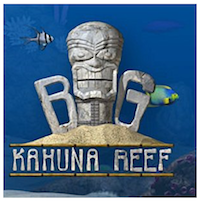 Big-Kahuna-Reef-Game.png