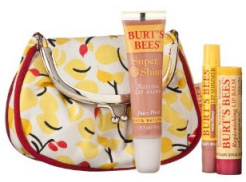 Burts-Bees-Lip-Pouch.png