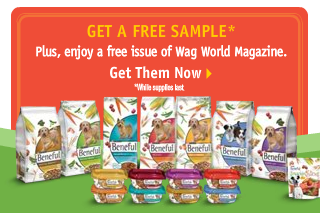 Purina Beneful Sample