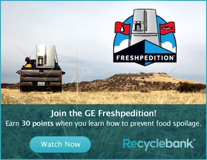 GE Freshpedition