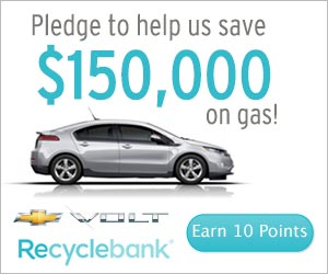 Recyclebank Gas Savings