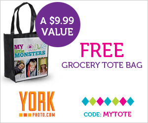 York Photo FREE Bag