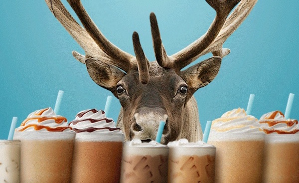 Caribou-Coffee-BOGO